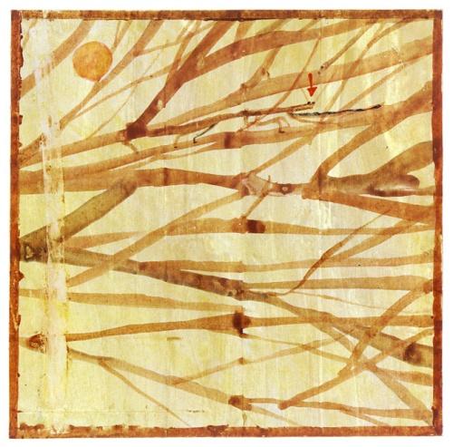 Insectlopedia The Walking Stick-Douglas Florian-1998
