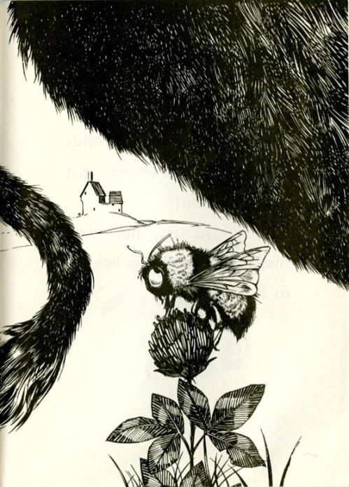 The Story of Ferdinand bull butt-Robert Lawson Munro Leaf-1936