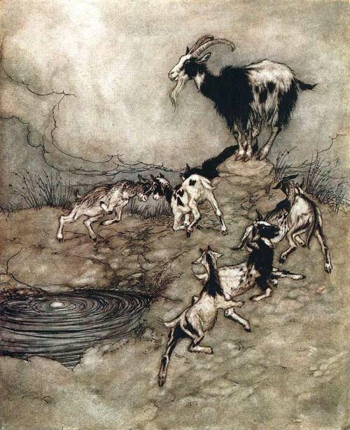 Arthur Rackham Goats