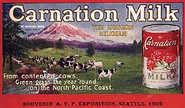 Carnation Milk's Contented Cows