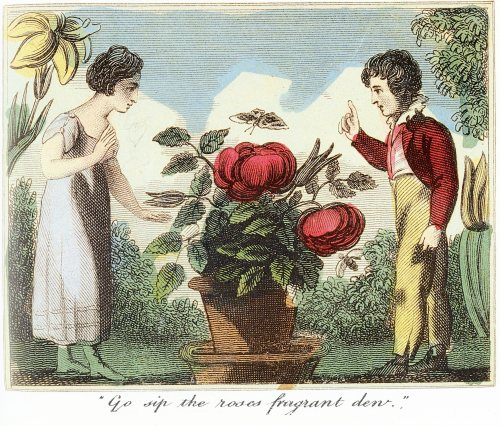sip the roses, anonymous artist, 1809