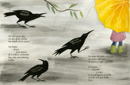 crows  Paschkis