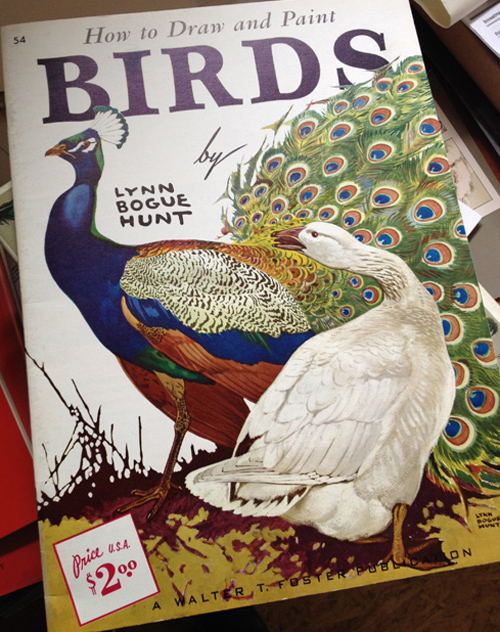 How To Draw and Paint Birds cover