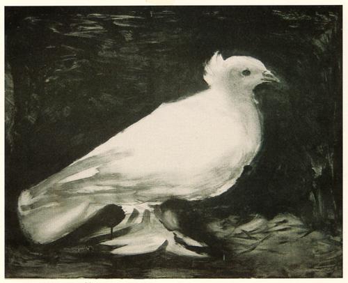 Pablo Picasso-The Dove
