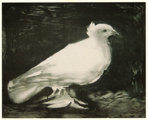 Pablo Picasso-The Dove