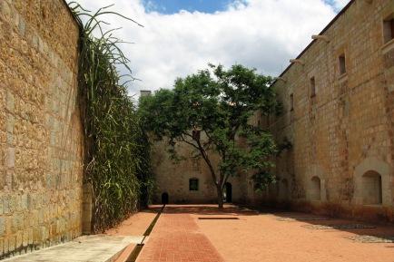 20110626_Oaxaca_385