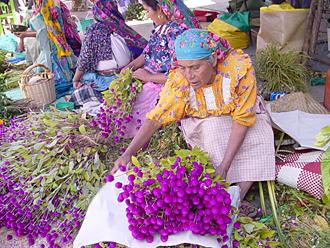 marchande_de_fleurs_a_oaxaca