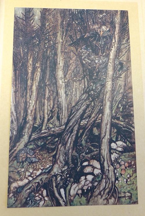 Rackham-Undine-fearsome forest