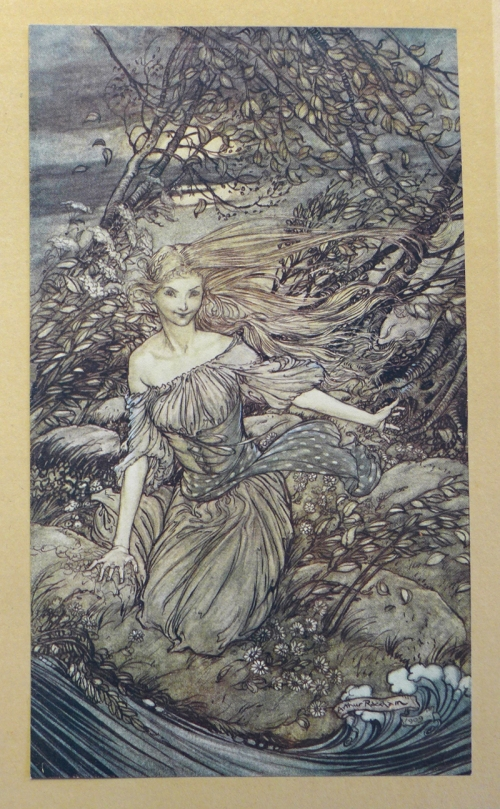 Rackham-Undine-flood
