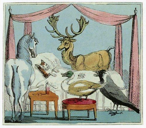 dame dearlove ditty 1805
