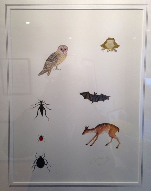 Jane Ray-Owl Frog and Other Such Creatures-The Lost Happy Endings
