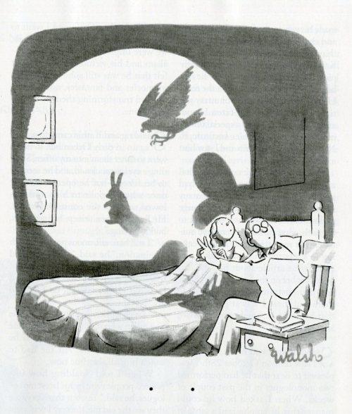 shadow cartoon