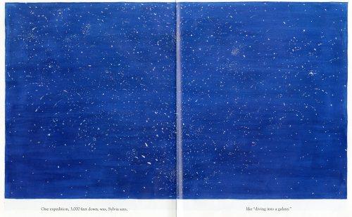 Clare Nivola biography of Sylvia Earle - Life in the Ocean