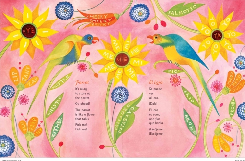 Flutter&Hum parrot