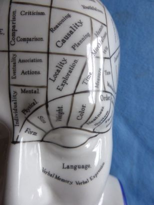 Close-Up Phrenology