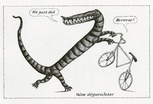 gorey bicycle012
