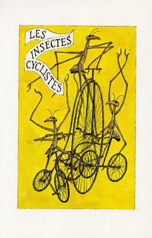 gorey bicycle121