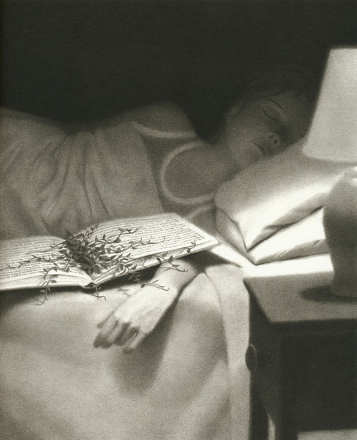 Illustration by Chris Van Allsburg