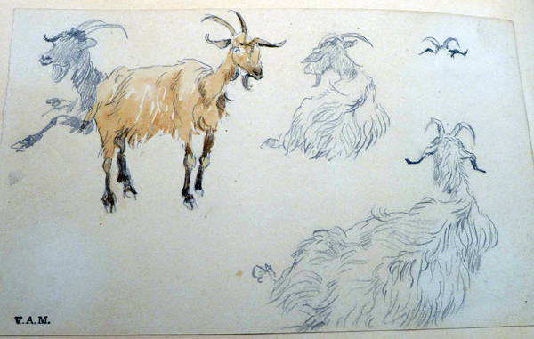 r-caldecott-goats-sketch