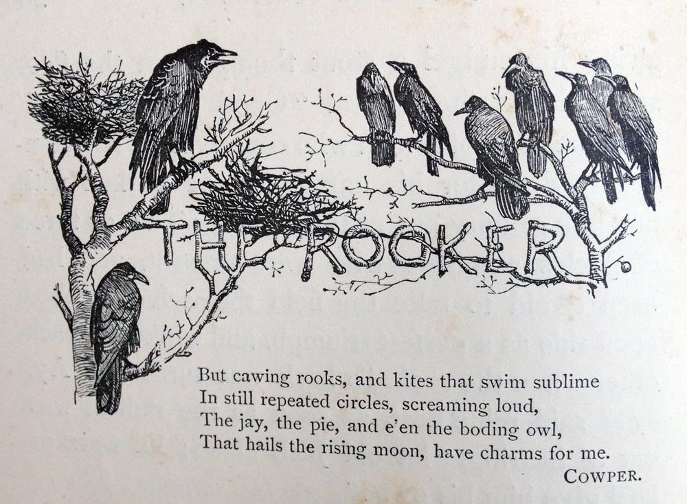 r-caldecott-the-rookery