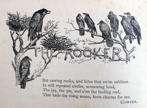 r-caldecott-the-rookery