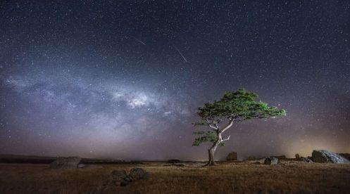 Wonder at the Stars