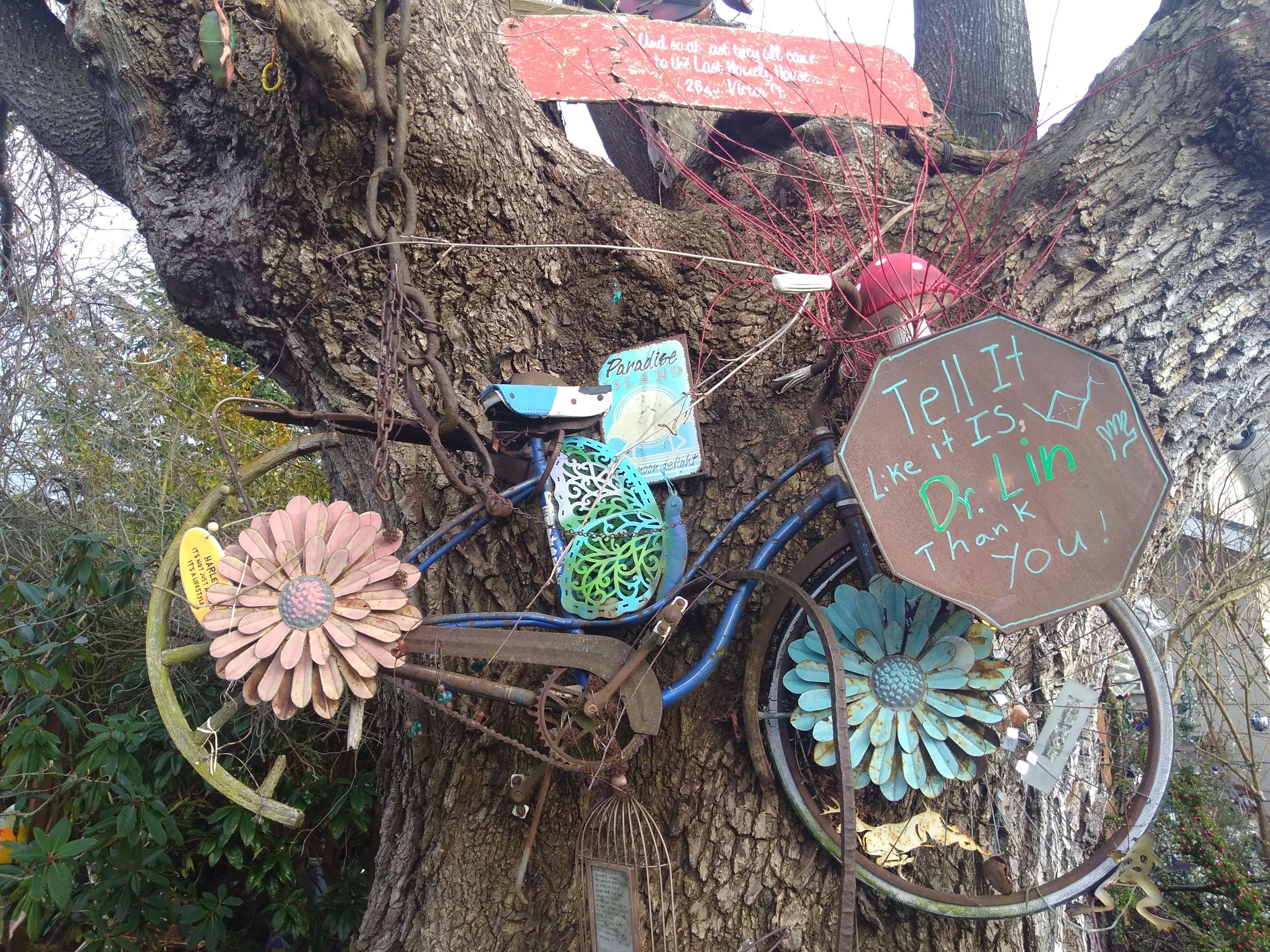 BATT 6 Bike in a Tree