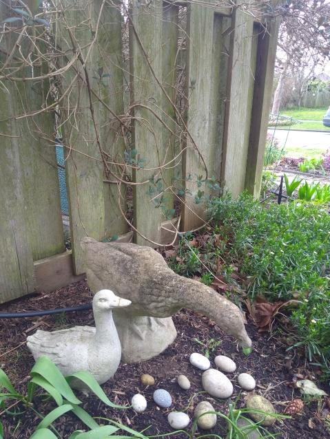 Batt Geese